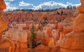Картинка небо, облака, дерево, скалы, каньон
