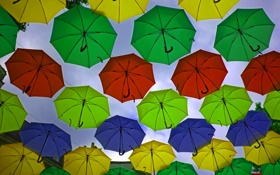 Обои фон, зонты, декорация