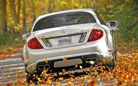 Обои осень, белый, листья, деревья, Mercedes-Benz, скорость, суперкар