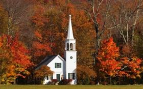 Обои осень, листья, деревья, листва, башня, церковь, домик