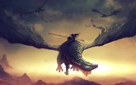 Картинка девушка, полет, скалы, крылья, драконы, арт, наездник
