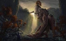 Обои гигант, лесной, пастух, скалы, путник, ущелье, человек