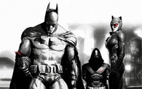 Картинка batman, Batman Arkham City, catwoman