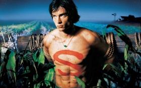 Картинка поле, ночь, ферма, Кларк Кент, Том Уэллинг, Тайны Смолвиля, Smallville