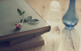 Картинка цветок, стол, роза, книги, ваза, заломы