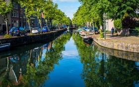 Обои вода, деревья, машины, отражение, дома, лодки, Нидерланды