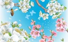 Обои цветы, природа, пчела, коллаж, ветка, весна, сад