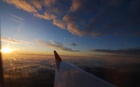 Обои небо, закат, крыло