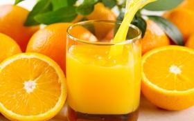 Обои апельсины, апельсиновый сок, цитрус