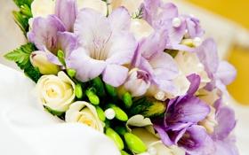 Картинка букет, розы, цветы