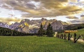 Картинка дорога, поле, горы
