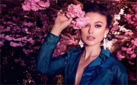 Картинка цветы, фото, розовый, актриса, Кира Найтли, KEIRA KNIGHTLEY