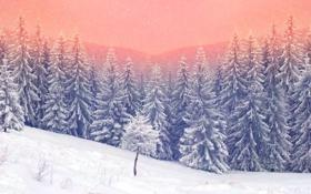 Обои зима, лес, снег, снежинки, елка, nature, winter