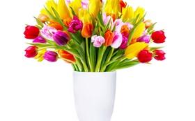 Обои цветы, букет, тюльпаны, ваза, разноцветные, белый фон