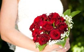 Картинка цветы, розы, руки, свадебный букет