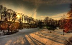 Картинка зима, солнце, лучи, снег, деревья, парк