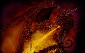 Картинка city, fire, Dragon