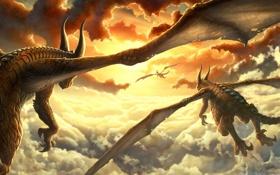 Обои солнце, облака, закат, крылья, драконы
