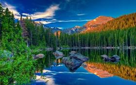Картинка лес, небо, горы, озеро