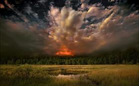 Обои лето, деревья, пейзаж, закат, природа, вечер