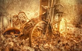 Картинка велосипед, фон, текстура