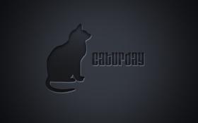 Обои кошка, кот, надпись, минимализм, minimalism, cat, слово