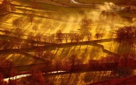 Картинка поле, свет, пейзаж, природа