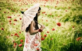 Картинка поле, настроение, маки, зонт, девочка