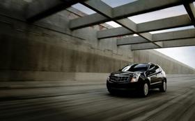 Обои скорость, тачка, Cadillac-SRX, внедорожник, джип