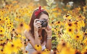 Обои лето, девушка, цветы, камера