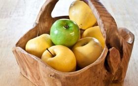 Обои корзина, яблоки, еда, фрукты