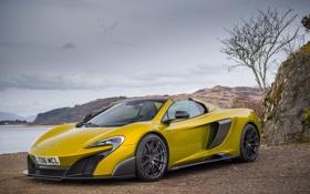 Обои макларен, суперкар, 675LT, Spider, McLaren