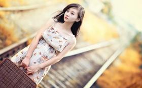 Картинка девушка, железная дорога, чемодан