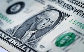 Картинка green, dollar, george washington