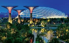 Обои огни, парк, вечер, подсветка, Сингапур