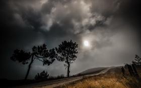 Картинка дорога, пейзаж, ночь