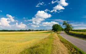 Картинка дорога, поле, лето, небо, трава, облака, деревья