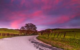 Картинка дорога, небо, облака, дерево, забор, поля, холм