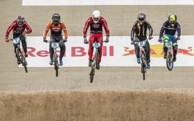 Картинка гонка, спорт, велосипеды