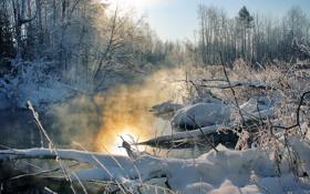 Картинка зима, деревья, закат, туман, река