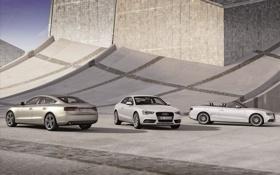 Обои Audi, ауди, Coupe, cabrio