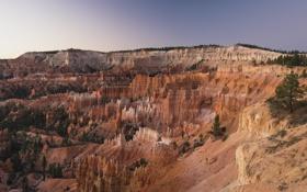 Картинка США, каньон, скалы, деревья, природа