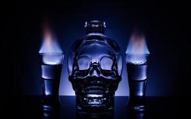 Обои пламя, череп, бутылка, водка, рюмки