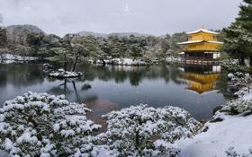 Картинка снег, озеро, Kyoto, photographer, Kenji Yamamura, Kinkaku Temple, золотой храм