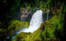 Картинка США, камни, лес, Sahalie Falls, зелень, Oregon, мох
