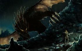 Картинка взгляд, девушка, скала, фантастика, дракон, меч, доспехи