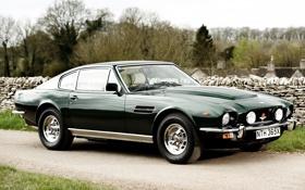 Обои деревья, Aston Martin, зелёный, суперкар, классика, передок, Астон Мартин