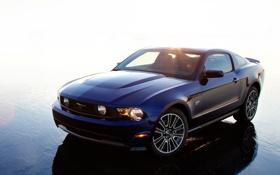 Обои Mustang, Ford, мустанг, 2010, форд