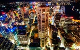 Обои ночь, город, огни, здания, Сидней, мегаполис, вид сверху