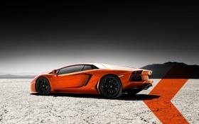 Картинка оранжевая, вид сзади, ламборгини, авентадор, lamborghini aventador lp700-4